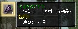 081225_05